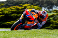 Casey Stoner Limited Edition Print